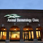 Animal-Dermatology-Clinic-Indianapolis.jpg
